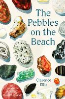 The Pebbles on the Beach; A Spotter's Guide